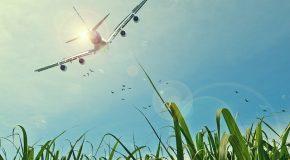 Litige avec une compagnie aérienne – Saisir un tribunal se complique